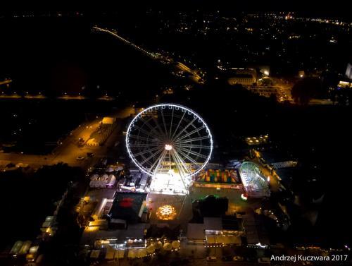 Koło Widokowe w Gdyni nocą